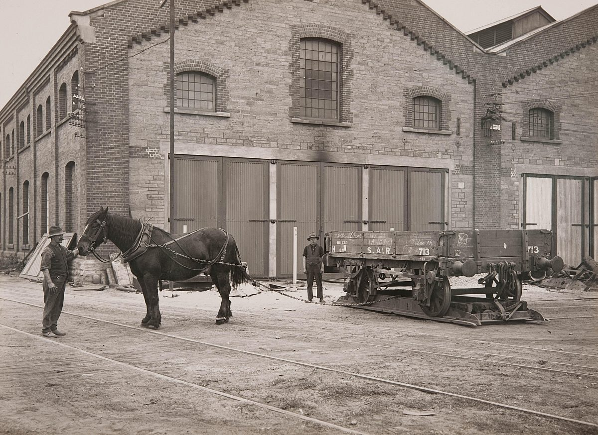 Sar employees and horse at the islington railyards