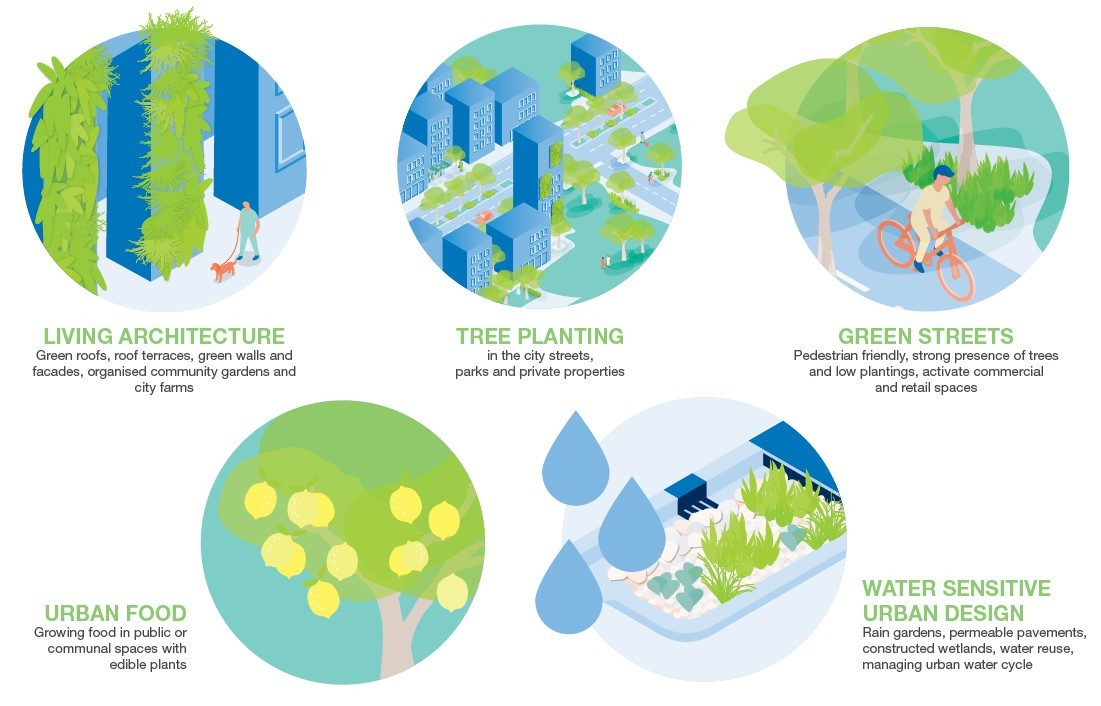Stylised graphic showing different forms of greening.