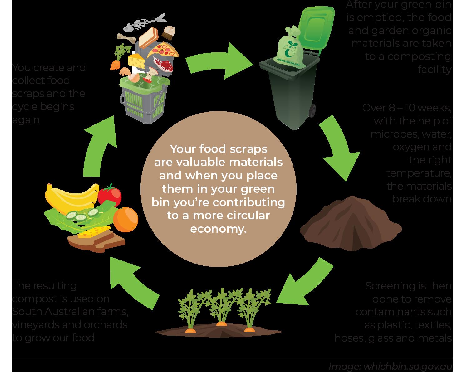 Organics recycling process