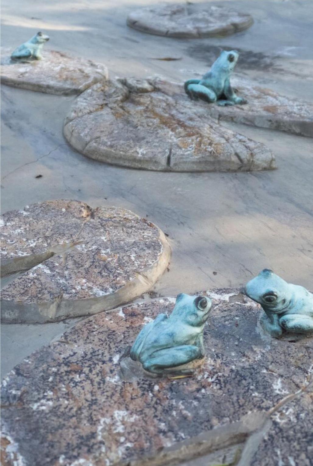 Wirrarninthi frog